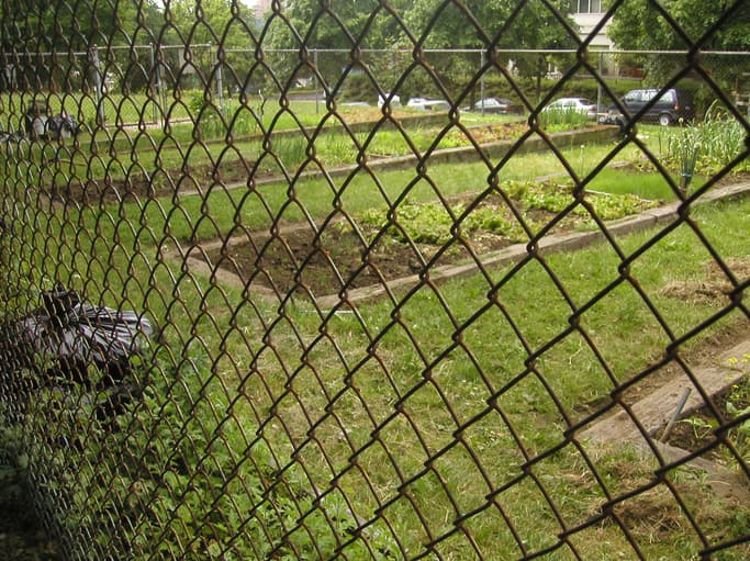 Chain Link Fence for Urban Garden by A-1 Fence Inc