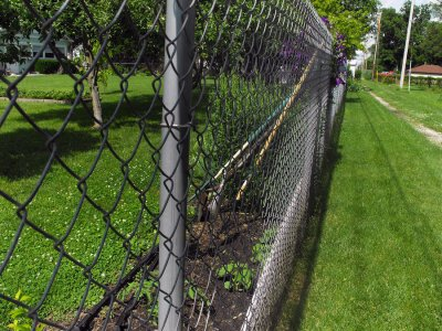 Using Chain Link Fencing Around Your Yard San Jose